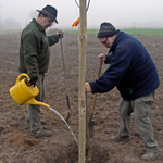 Baumpflanzung am Katzenbach