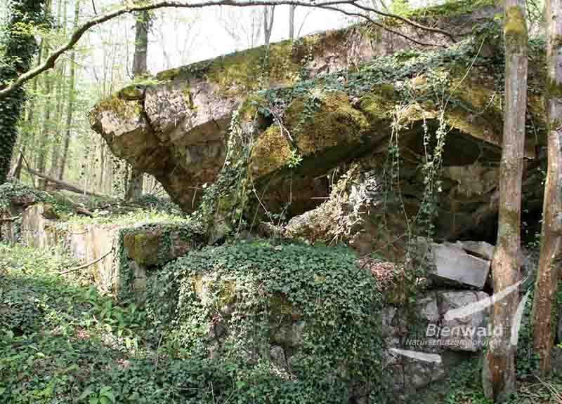 Bienwald-Bunker